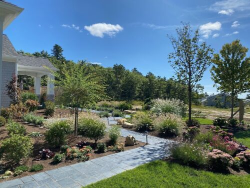 Remby Garden 2