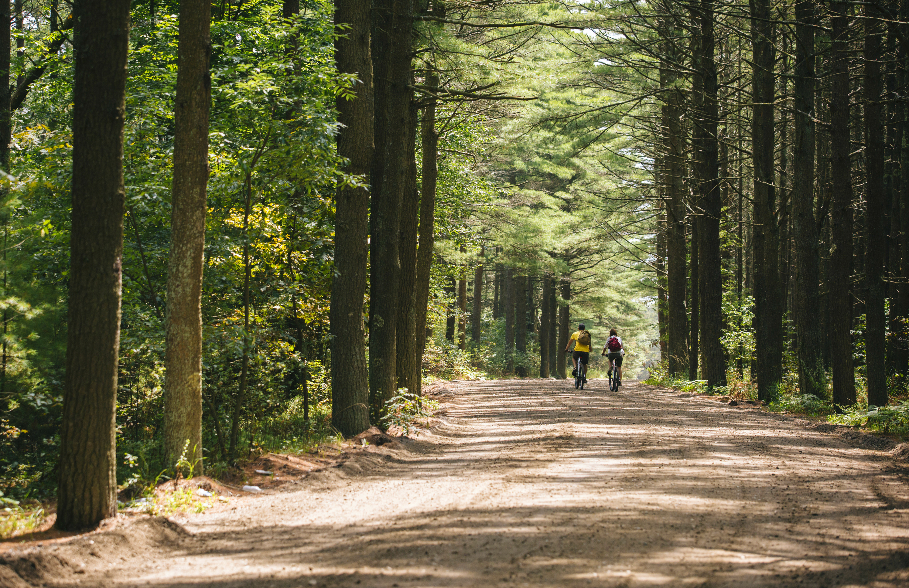 Biking Old Sandwich Road - The Oldest Unpaved Road in Continuous Use in the US