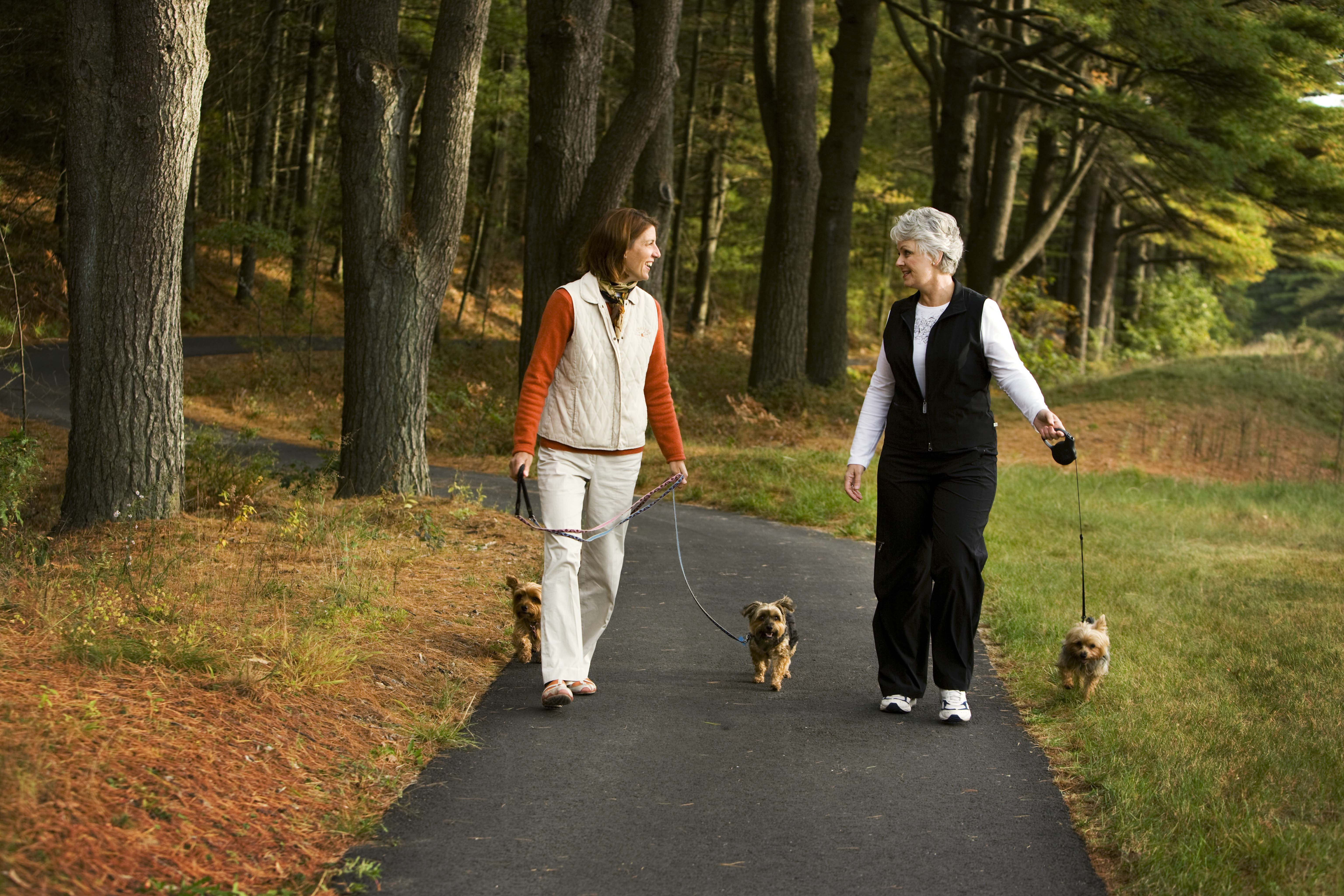More than 10 Miles of Paved Lit Walking Trails