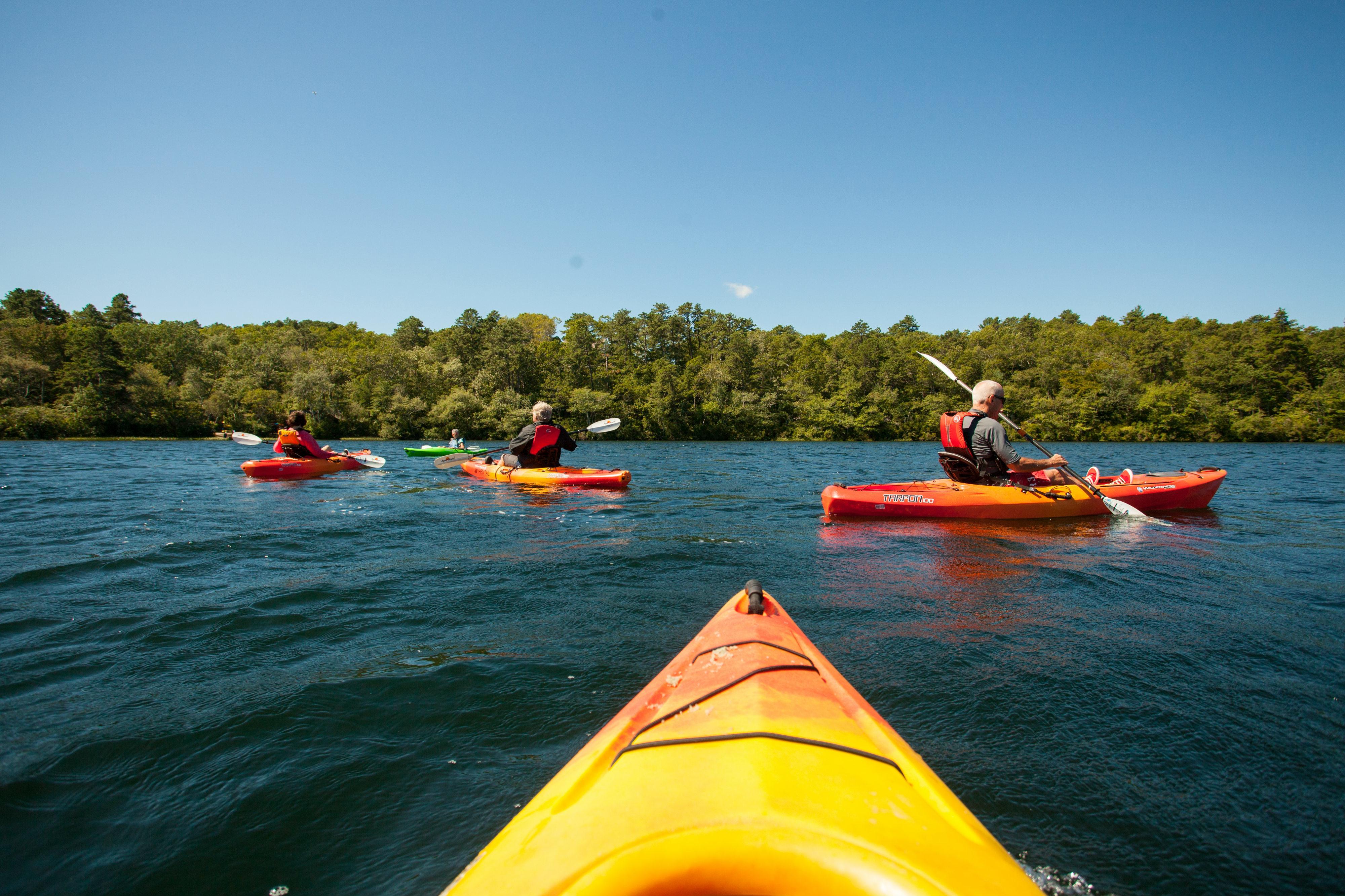 Kayaking Great Island Pond