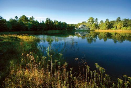 Ryecroft Pond Views