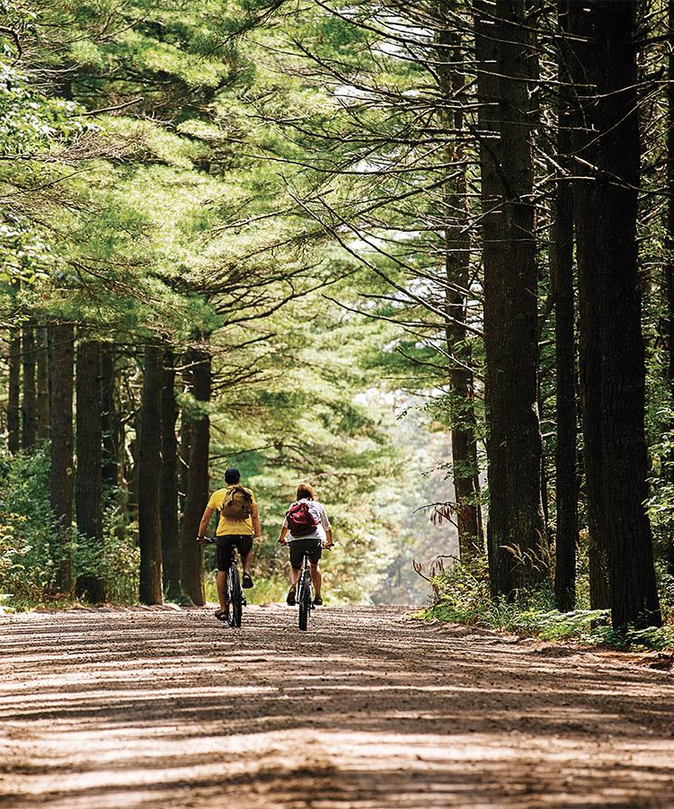 Whats-Here-Biking